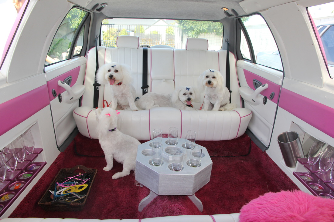 Pink Convertible Limo